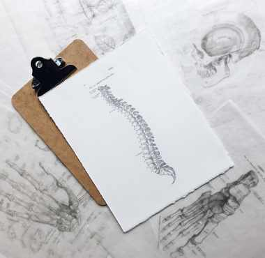 Chiropractic Care Benefit